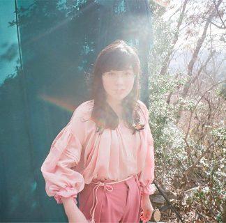 柴田聡子『がんばれ!メロディー』で炸裂したポップネスとあまりにも良い歌詞のこと